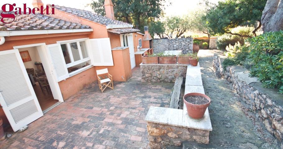 Argentario immobiliare affitti ville porto santo stefano - Foto case con giardino ...